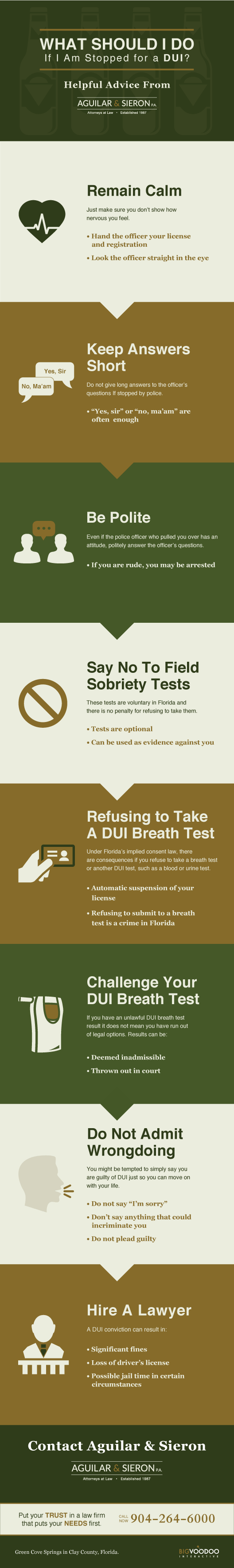 Stopped For Drunk Driving Infographic
